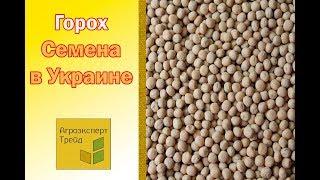 Семена Гороха Купить в Украине от Агроэксперт Трейд