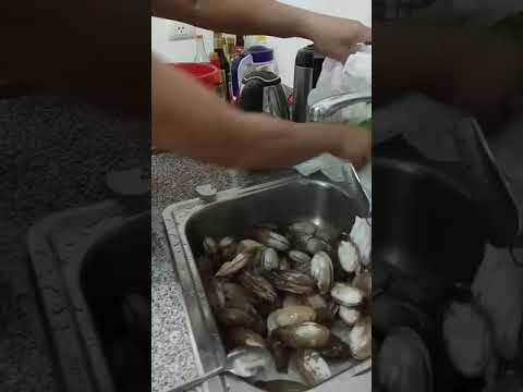Clean Geoduck from time to time