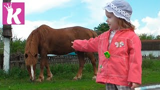 Животные для детей в деревне На ферме Animals for kids in the village on the farm