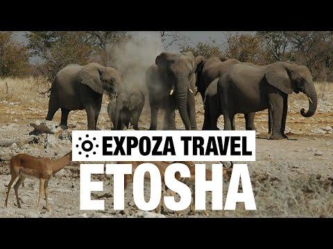 Etosha Vacation Travel Video Guide