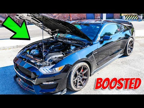 Whipple Supercharged GT350R Review - IT IS INSANE