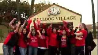 Bulldog Village