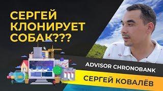 КРИПТОСЕКРЕТЫ — СЕРГЕЙ КОВАЛЕВ ADVISOR CHRONOBANK и Cryptoboss