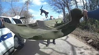 Bodycam Shows Police Use Blanket to Catch Kitten Falling From Tree