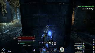 Video-Search for eso necromancer leveling