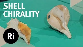 The Hidden Significance of Shell Chirality - Christmas Lectures with Charles Stirling
