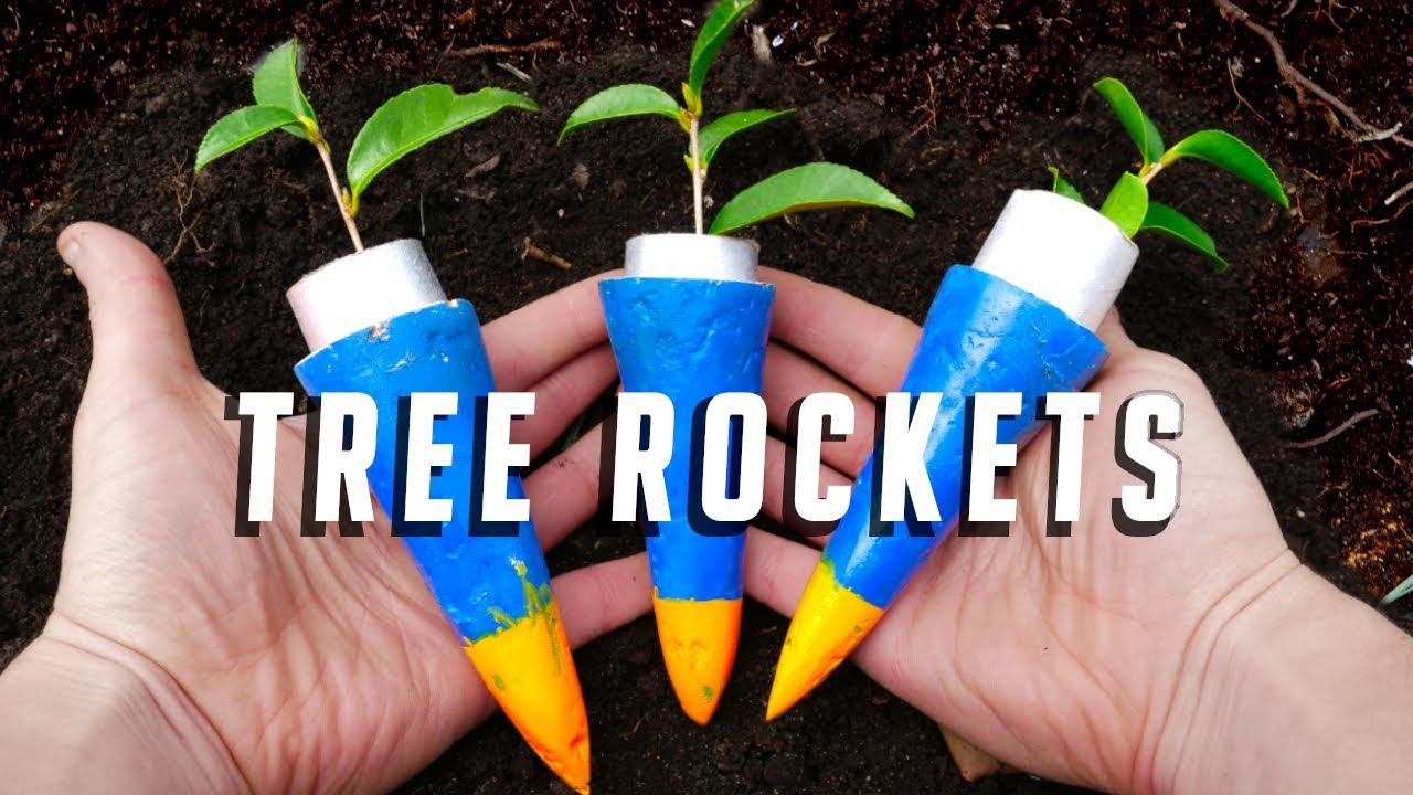 Can Rockets be used to Plant Trees?