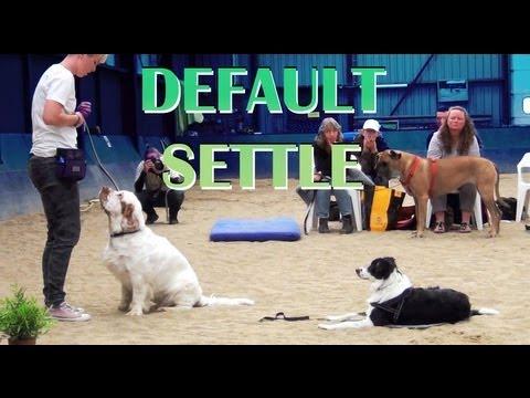 Capturing Calmness 2- clicker dog training