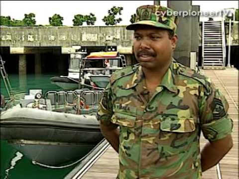 Alert and Vigilant, Changi Defence Squadron