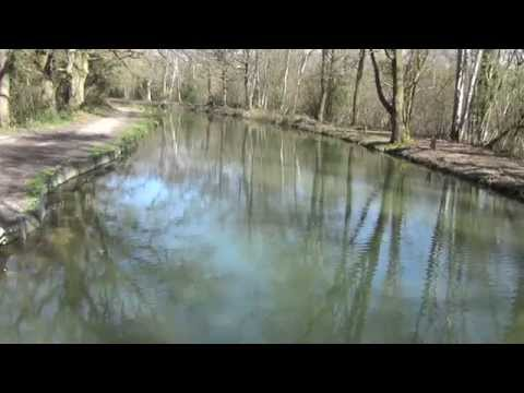 Basingstoke Canal Crookham Village March 2014