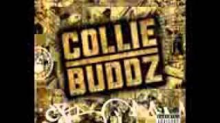 collie buddz- movin on (LYRICS IN DESCRIPTION)