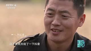 《平凡匠心》 20191116 训犬师| CCTV中文国际