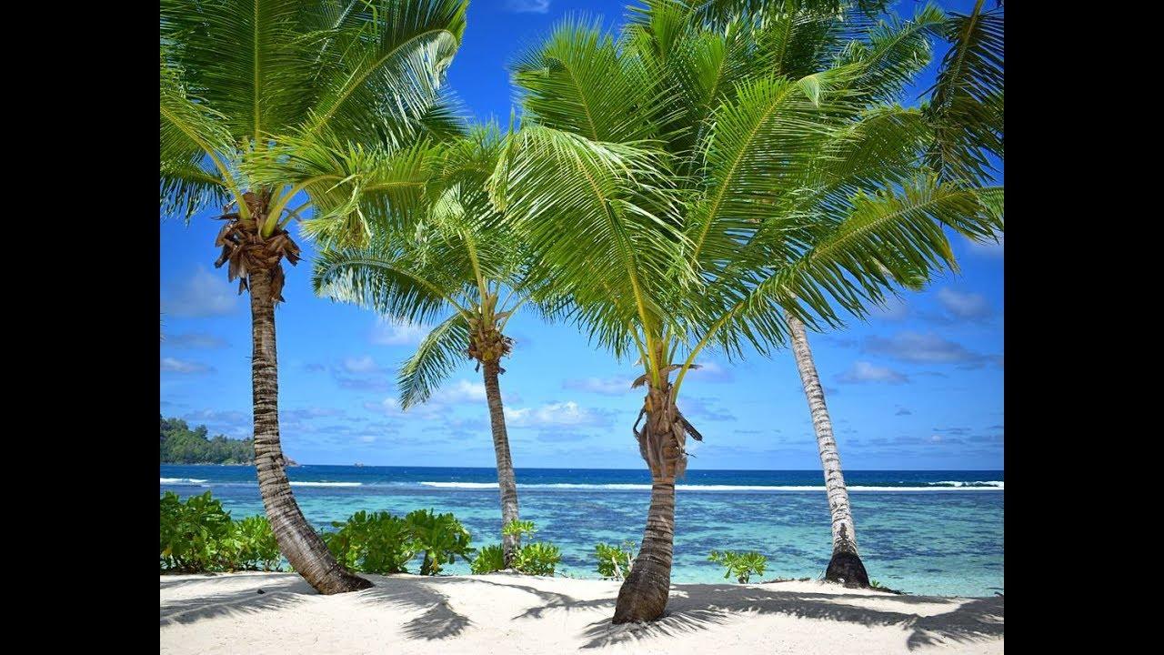 Seychellen webcam