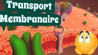 Le Transport Membranaire