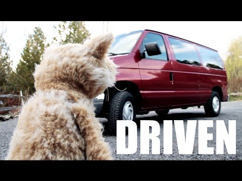 This Cat is NED - EP36 - DRIVEN