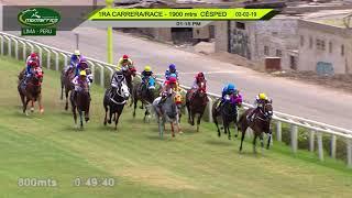 Vidéo de la course PMU HANDICAP 1900