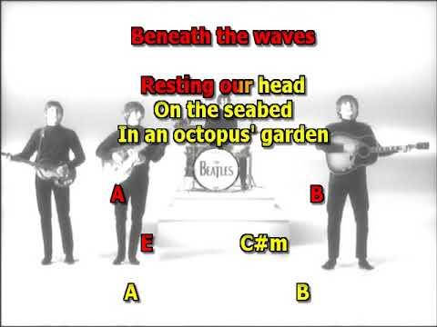 Octopus 39 S Garden Beatles Best Karaoke Instrumental Lyrics Chords Youtube