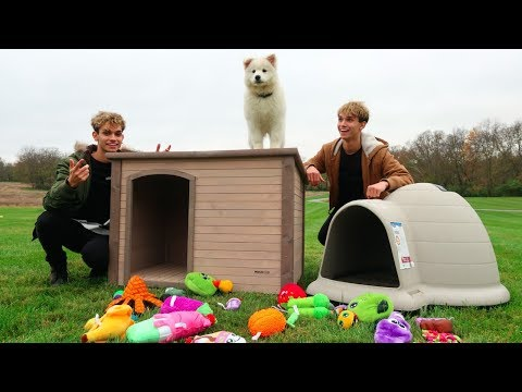 Download Youtube: WE BUILT OUR PUPPY HER DREAM HOME!