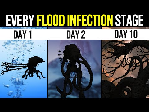 Every Stage of a Flood Infection (and the DISTURBING ENDGAME) | Halo Lore |