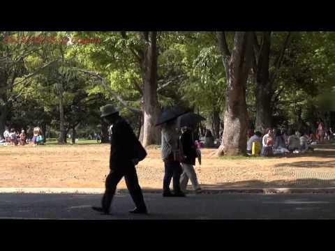 Japan Trip 2013 Tokyo Yoyogi Park holiday in Shibuya 593