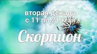 ♏СКОРПИОН  с 11 по 21 мая 20211/Таро-прогноз/Та...