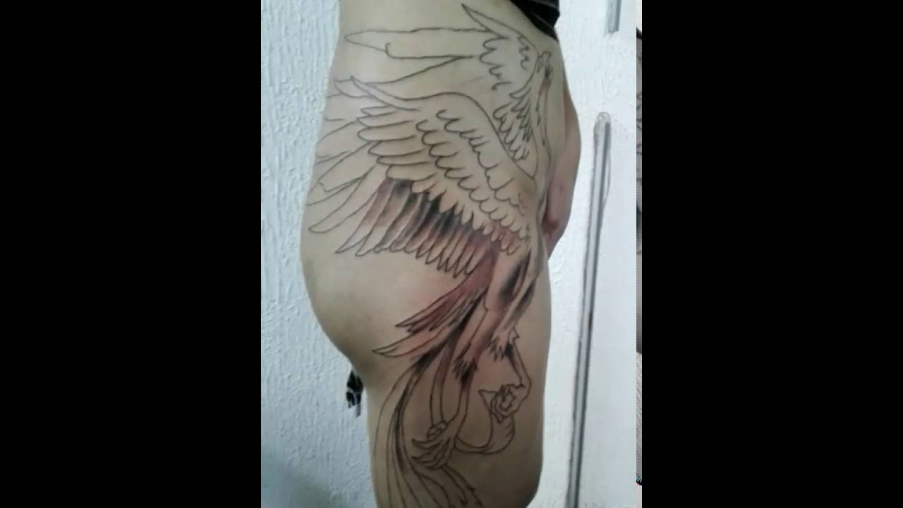 Extremamente Tattoo fenix na coxa - YouTube BC96