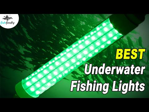 Best Underwater Fishing Lights In 2020 – Attract Fish Anywhere!