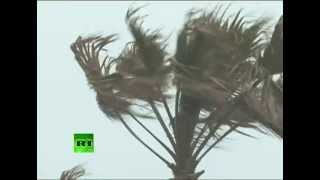 Winds at 140 km/h: Strongest storm in decades batters Japan