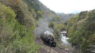 JR 東日本 SLぐんま みなかみ 在来線とSL 諏訪峡