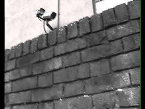 Virgo Horrorscope for Guardian Media Group