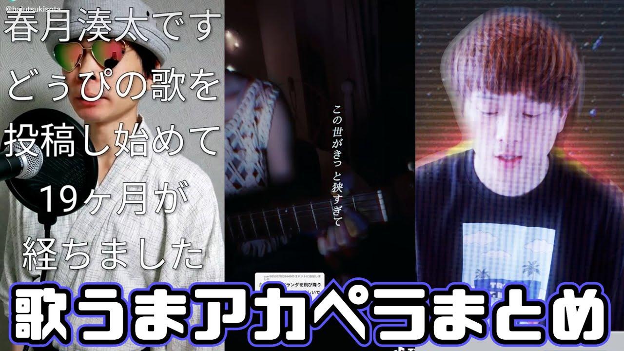 【TikTok】歌うまなアカペラまとめ🐢【春月湊太さん、めぐさん、fuuさん、ayakaさんとか!】【Japan】
