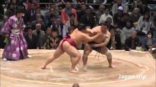遠藤 vs 千代の国の取組。 2016大相撲春場所3日目。 十両、遠藤 vs 鏡桜...