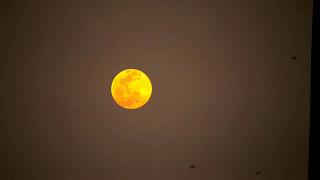 Moon Rise Darwin 20150829