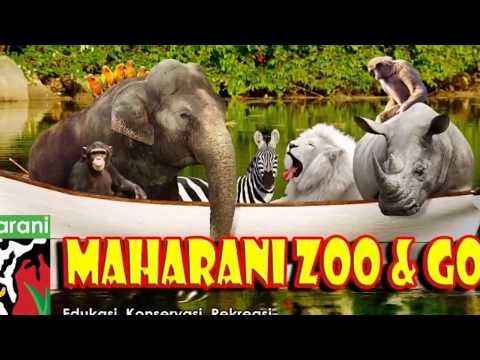 goa-maharani-lamongan-#traveling