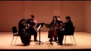 Shih-Hui Chen: Fantasia on a Theme of Plum Blossom. Fantasia