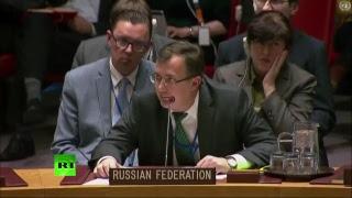 Совбез ООН проводит заседание по ситуации в Сирии
