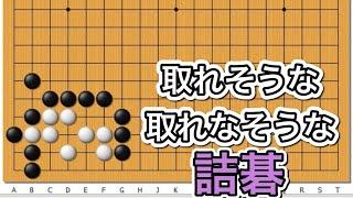【囲碁】詰碁講座~官子譜編~有名な問題編~NO645