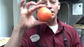 My Rare Lemon Orange Hybrid
