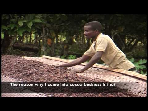 YOUTH IN COCOA FARMING
