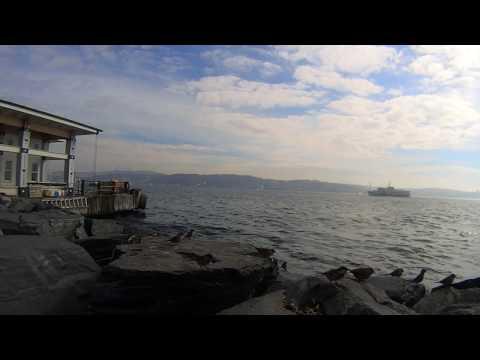 İSTANBUL Beşiktaş iskele Relax