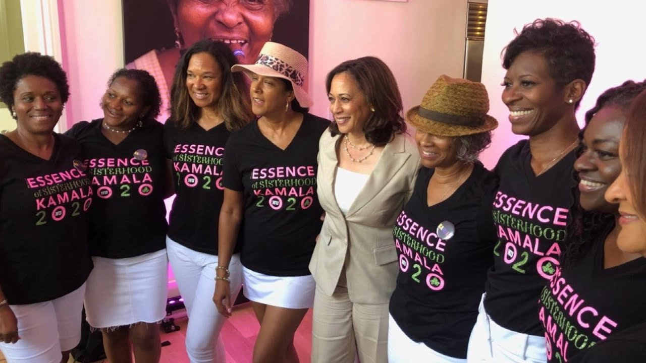 The Ladies of The Divine Nine Will Stroll In Unity To The Polls  [VIRAL VIDEO]