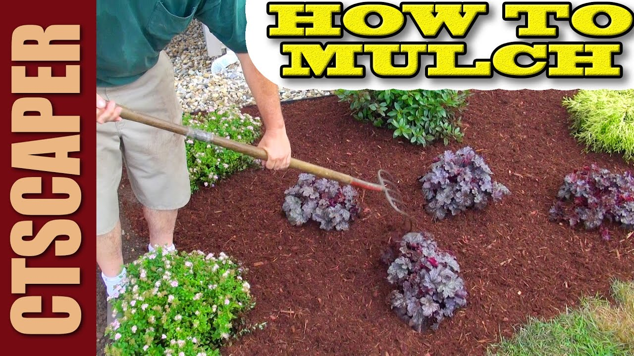 How To Mulch A New Landscape Youtube