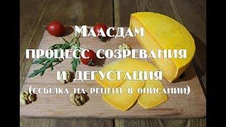Маасдам процесс созревания и дегустация ссылка на рецепт в описании