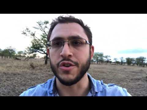 More crazy good safari experiences in the Serengeti - vlog 17