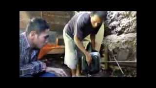 dokumenter penyulingan daun cengkeh (POLITAMA SOLO)