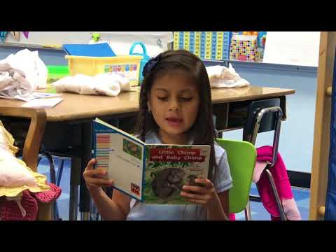 Little Chimp and Baby Chimp - Read by: Ashley Lopez