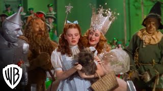 The Wizard Of Oz |
