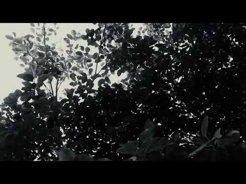 Rizky Febian - Cukup Tau ( Cover Video )