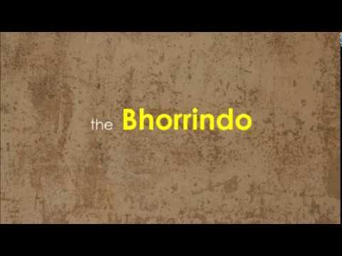 Bhorrindo - A Gujarati Folk Musical Instrument