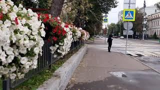 Фото достопримечательности москва улица академика Петровского доступна